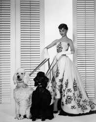BILLY WILDER - Sabrina Fairchild (Audrey Hepburn)
