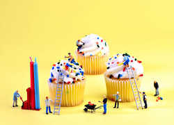 CATHY SCOLA - Cupcake Construction