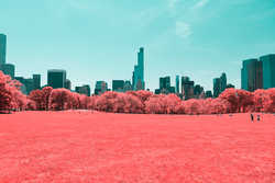 Infrared NYC II