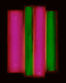 Archive (green/pink)